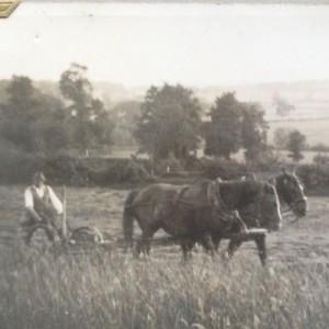 Shirehill Farm Marshfield